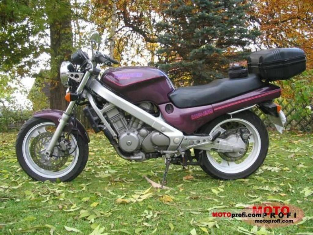Honda NTV 650 Revere (reduced effect)