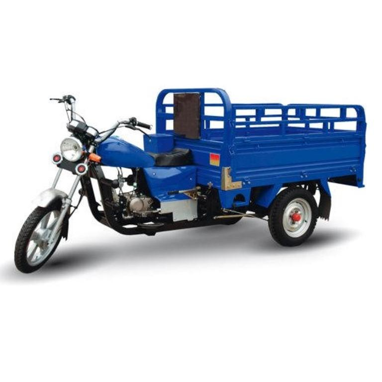 Orion Tricycle 200